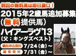 【残り35時間】無料提供馬ハイアーラヴ'13の申込見込について