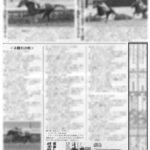 ドゥオーモ、週刊Gallop3歳馬診断で★5つ!会員の皆様からの歓びの声をご紹介。