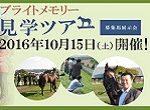 広尾の2014年産駒、動き活発化!