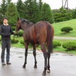 北海道募集馬展示会ビジューミス'15コメント