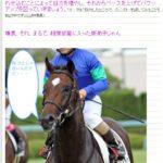 広尾っ仔応援ブログ「千里の馬も伯楽に逢わず」ご紹介!「相撲部屋の新弟子」