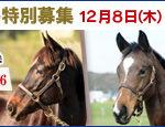 そろそろ日本馬が絡んできそうな海外馬券