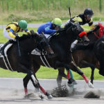 Team Hiroo近親馬、今週末の出走予定