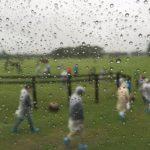連日の雨!異様な夏が現実化