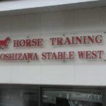 2015年産募集馬栗東近郊牧場見学ツアー 吉澤ステーブルWEST編