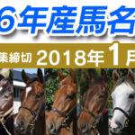 馬名選挙、1stステージ中間発表