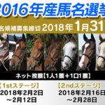 本日、2016年産馬の早期特典、馬名応募など諸々終了します。