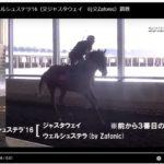2016年産募集馬歩き動画一覧チェック用